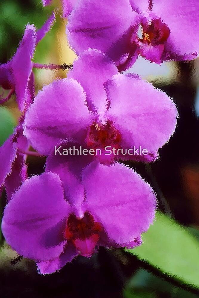 Soft As Velvet by Kathleen Struckle