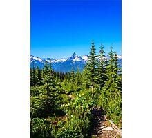 Rocky mountain  Meadows Photographic Print