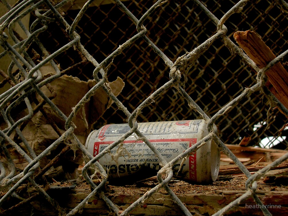 Death of a Beer Can by heatherrinne