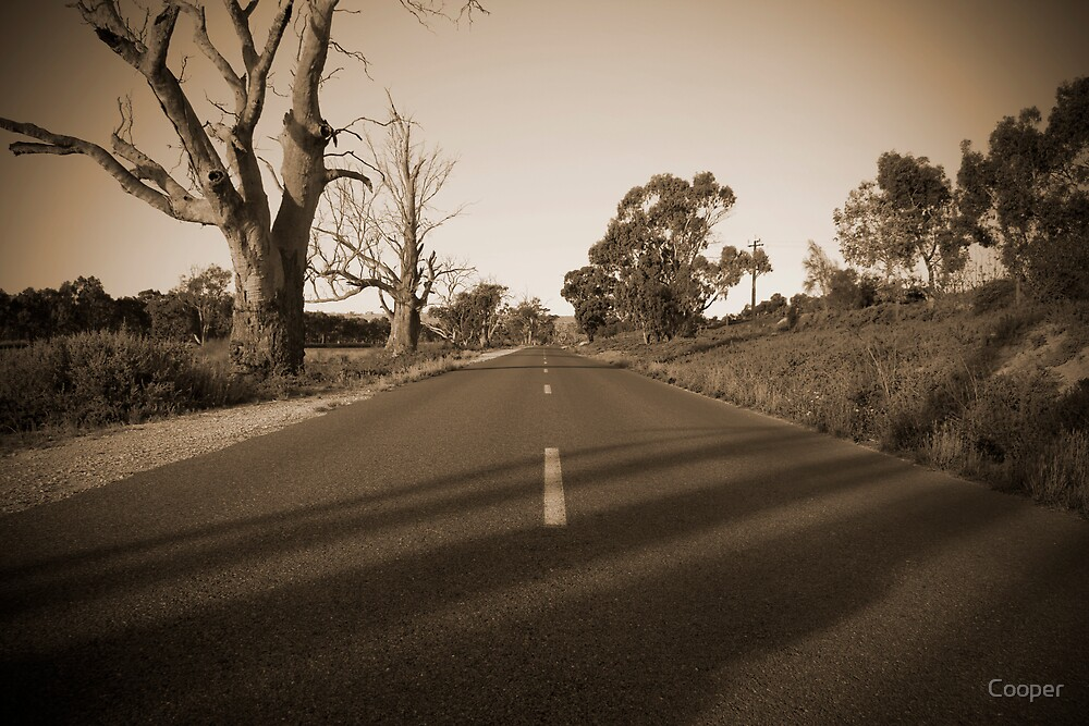 Country road in sepia by Cooper