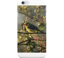Tanager iPhone Case/Skin