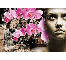 'Orchid Thought' Photographic Print