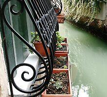 Venetian Windowsill by Anne McGrath