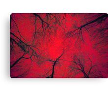 Tree Tops- Red Canvas Print