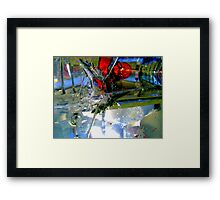 Smashed Framed Print