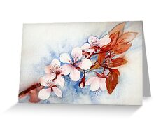 Prunus Blossom Greeting Card