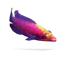 Geometric Abstract Mystery Wrasse by AquanautStudio
