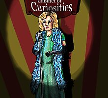 Elsa's cabinet of curiosities  by billyfalcon