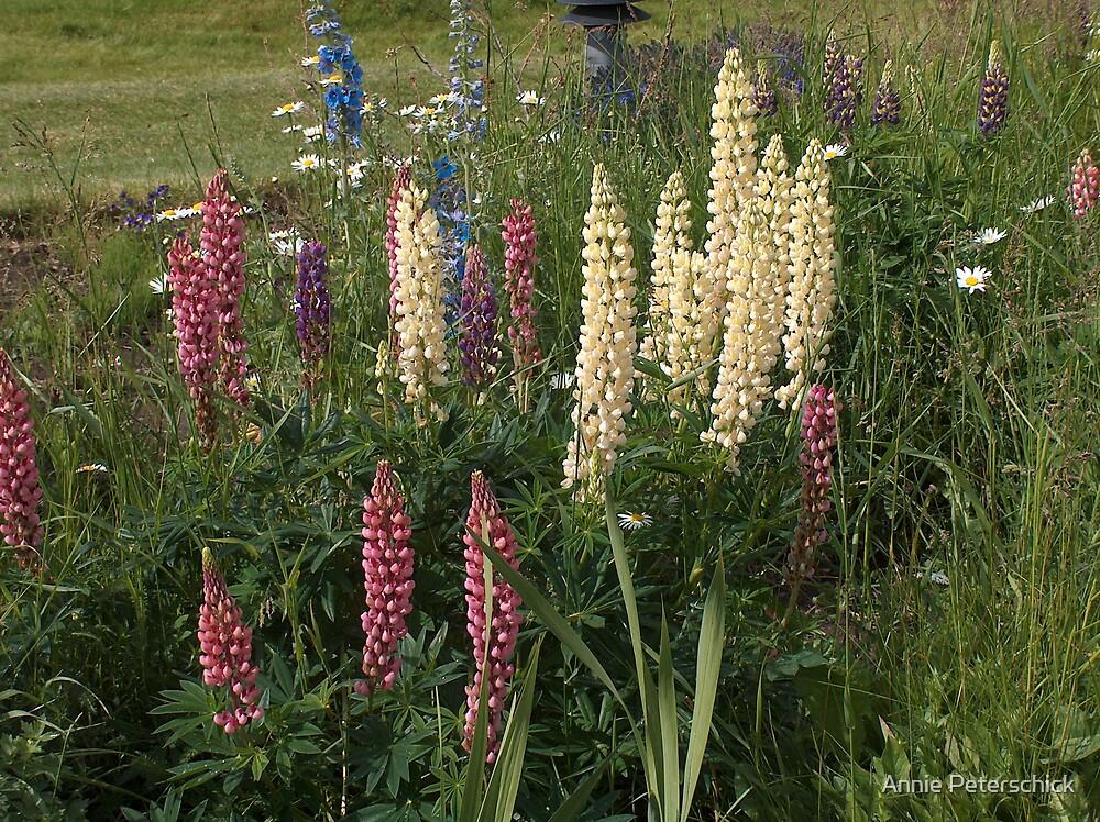 Flower Spikes 1 by Annie Peterschick