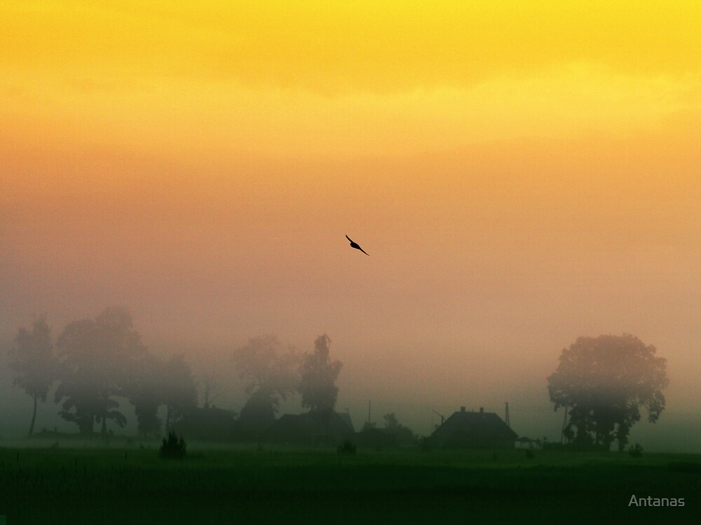 Sunrise in village by Antanas