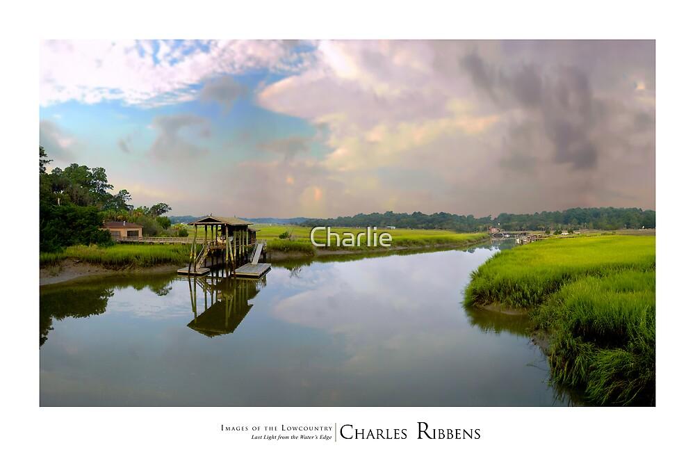 Tuten's Creek by Charlie