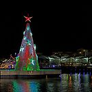 Floating Xmas Tree by Ian Creek