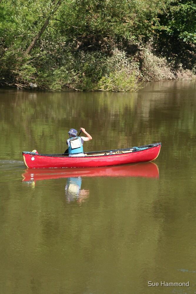 Row the boat by Sue Hammond