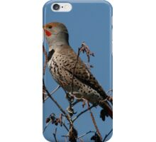Flicker iPhone Case/Skin