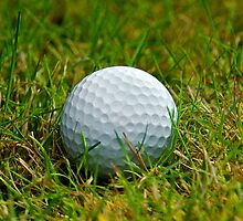 Golf Ball in the rough by Jeffrey  Sinnock