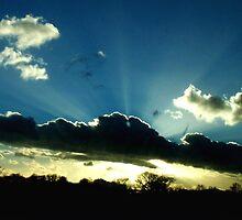 Ray of Light by LisaRoberts