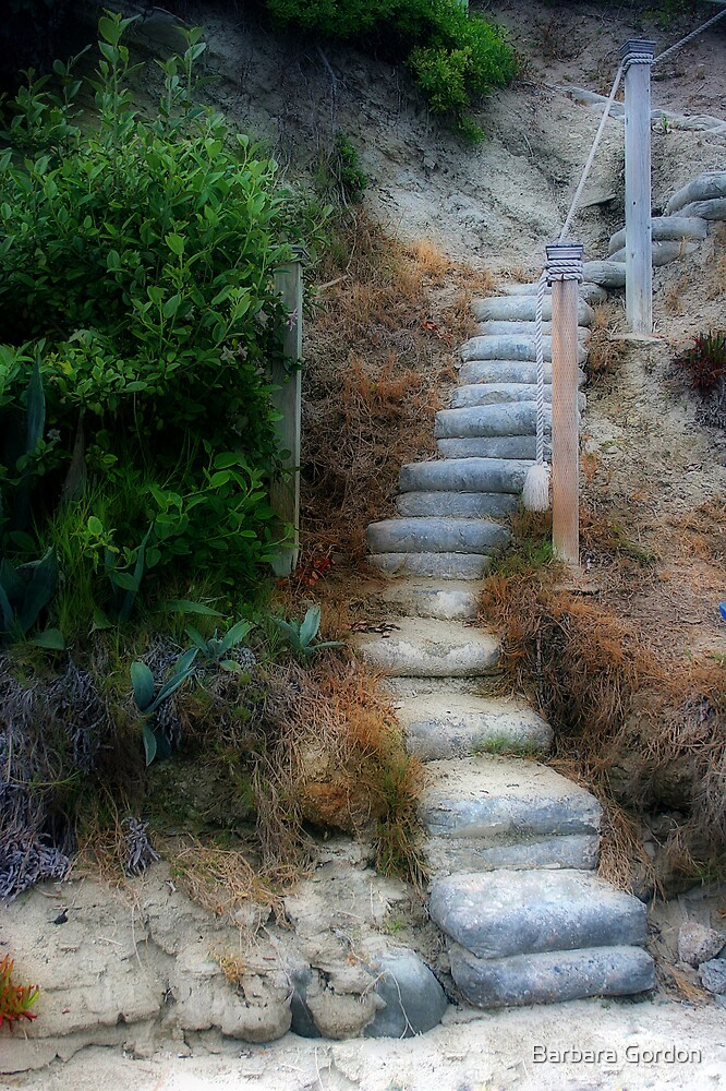 Stairway Foliage by Barbara Gordon