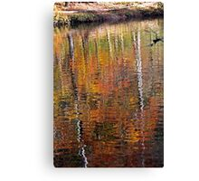 Mirror Mirror in the Water Canvas Print