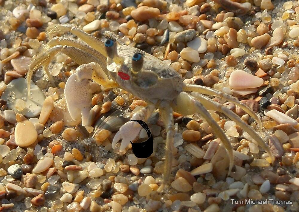 Diva Crab by Tom Michael Thomas
