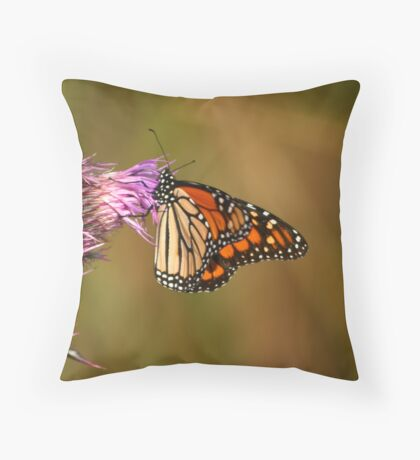 MONARCH AND THISTLE! Throw Pillow