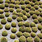 Getty Polka Dots by heatherrinne