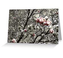 a splash of magnolia Greeting Card