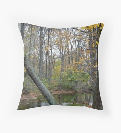 Where I first met you Throw Pillow