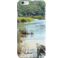 Lowcountry Marsh View iPhone Case/Skin