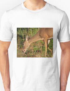 Grazing! T-Shirt