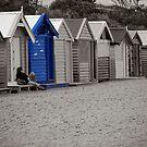 Blue Bathing Box by Chris Annable