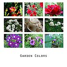 Garden Colors by Matt Dawdy