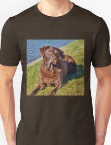 Ball? Unisex T-Shirt