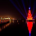 Geelong's Floating Christmas Tree by Phil Thomson IPA