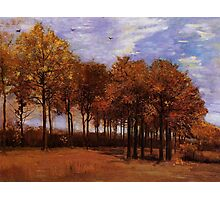 Autumn Landscape, by Vincent van Gogh. Vintage fine art impressionism oil painting. Photographic Print