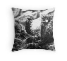 Sunny Caterpillars   Throw Pillow