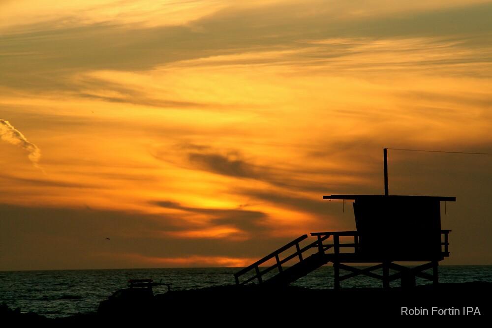California Sunset by Robin Fortin IPA