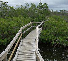 A Walk On A Bridge by JacksonNorris