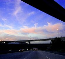 Freeway overpasses by Christina Tang