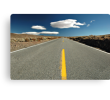 Desert Road Canvas Print