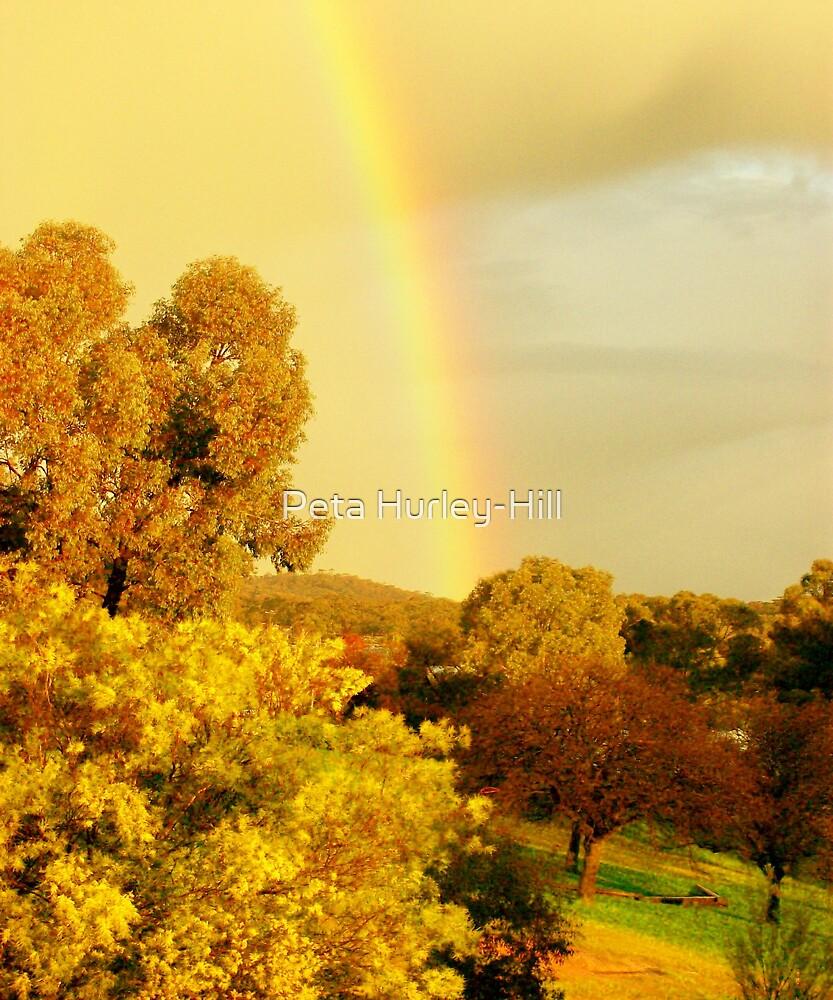 rainbow by Peta Hurley-Hill