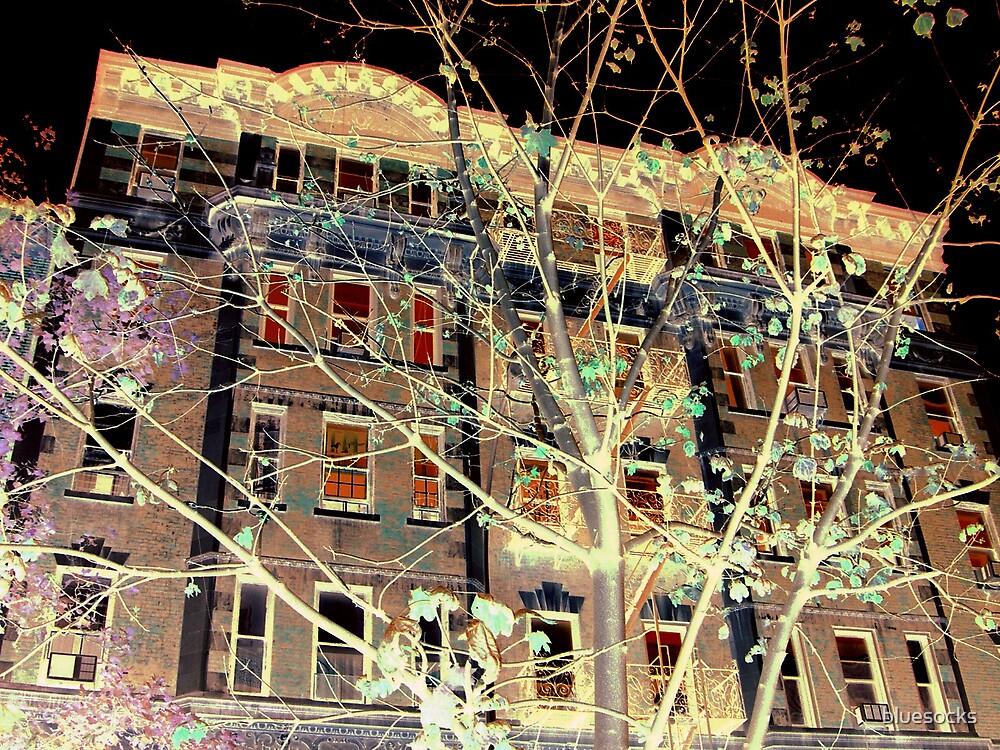 Chelsea NYC by bluesocks