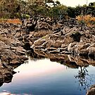 Rocks amid the River by Phil Thomson IPA