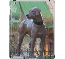 The McCoy Memorial Library Dog iPad Case/Skin