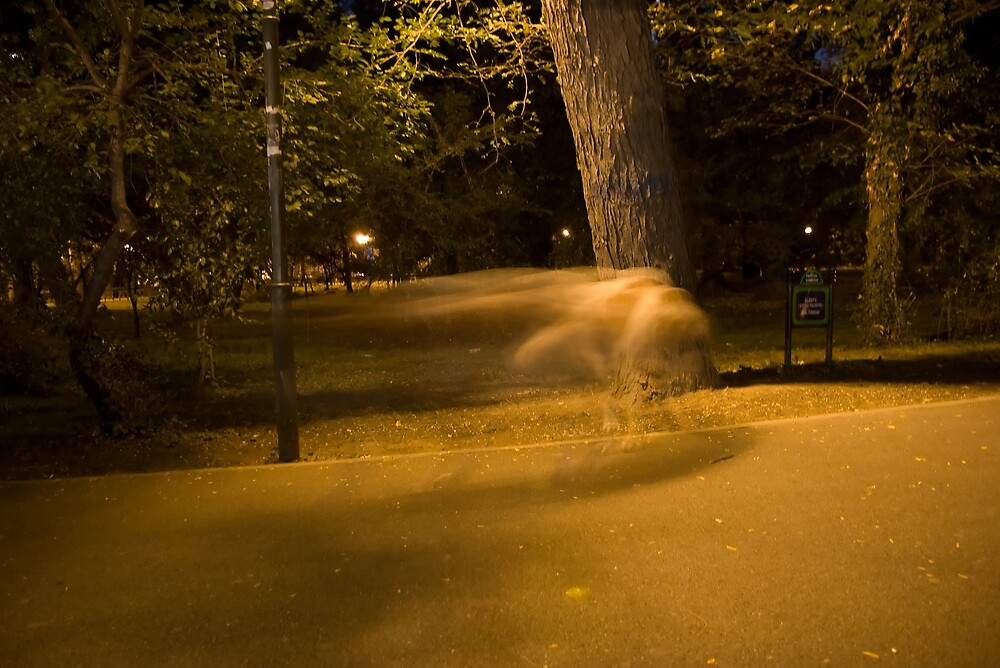 Ghost in the park by ictin