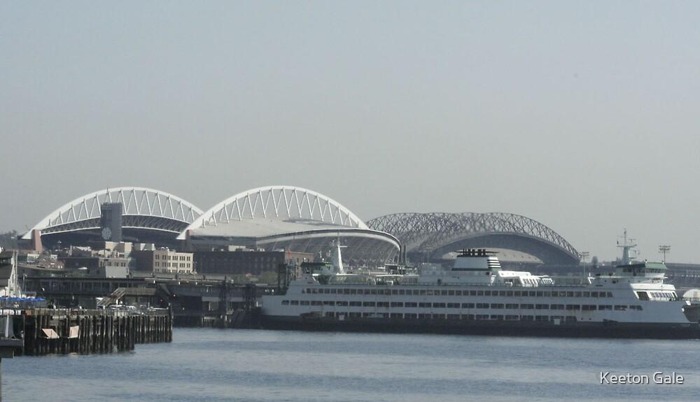 Seattle Stadium  by Keeton Gale