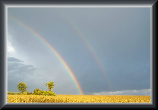 Rain and the Double Arc by Starr1949