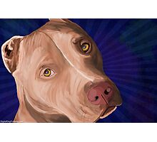Red Nose Pit Bull Painted on Blue Background Photographic Print