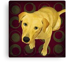 Blond Labrador Mix on Burgndy and Sage Back Canvas Print