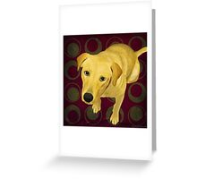 Blond Labrador Mix on Burgndy and Sage Back Greeting Card