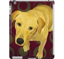 Blond Labrador Mix on Burgndy and Sage Back iPad Case/Skin
